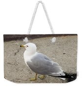 Close-up Of Seagull Weekender Tote Bag