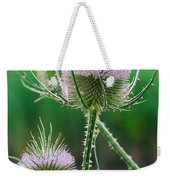 Close Up Of Teasel Blossoms Revealing Weekender Tote Bag