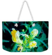 Close Up Of Yellow Wild Flowers Weekender Tote Bag