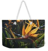 Close Up Photo Of A Bee On A Bird Of Paradise Flower  Weekender Tote Bag