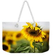 Close Up Single Sunflower In South Dakota Weekender Tote Bag