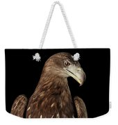 Close-up White-tailed Eagle, Birds Of Prey Isolated On Black Bac Weekender Tote Bag