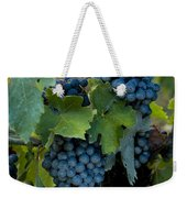 Close View Of Chianti Grapes Growing Weekender Tote Bag