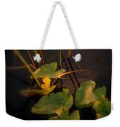 Closer Weekender Tote Bag