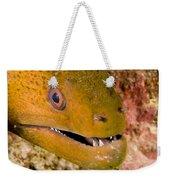 Closeup Of A Giant Moray Eel Weekender Tote Bag