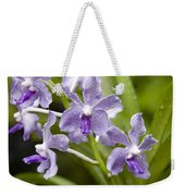 Closeup Of A Hybrid Cultivated Orchid Weekender Tote Bag