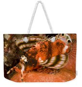 Closeup Of An Ocellated Lionfish Weekender Tote Bag
