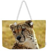 Closeup Of Cheetah Weekender Tote Bag