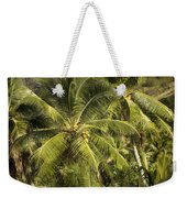 Closeup Of Coconut Palm Trees Weekender Tote Bag