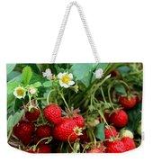 Closeup Of Fresh Organic Strawberries Growing On The Vine Weekender Tote Bag