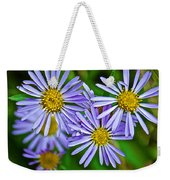 Closeup Of Leafy Bract Asters On Iron Creek Trail In Sawtooth National Wilderness Area-idaho  Weekender Tote Bag