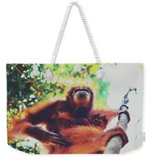 Closeup Portrait Of A Wild Sumatran Adult Female Orangutan Climbing Up The Tree And Holding A Baby Weekender Tote Bag