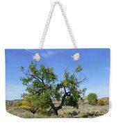 Cloud And Cottonwood Weekender Tote Bag by Cris Fulton