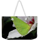 Cloudless Giant Sulphur Butterfly  Weekender Tote Bag