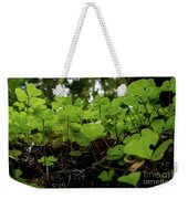 Clover In Montgomery Woods State Natural Reserve Weekender Tote Bag