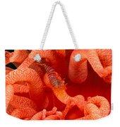 Clown Shrimp Weekender Tote Bag
