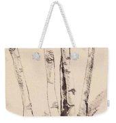 Clump Of Birch In Winter Weekender Tote Bag