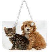 Cockapoo Puppy And Tabby Kitten Weekender Tote Bag