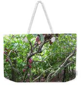 Cocoa Tree With Ripe Cocoa Pods Weekender Tote Bag