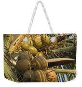 Coconuts Cluster At Los Tules Resort Weekender Tote Bag