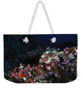 Cocos Island Octopus Hiding On Reef Weekender Tote Bag
