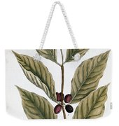 Coffee Plant, 1735 Weekender Tote Bag