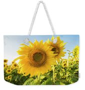 Colby Farms Sunflower Field Closeup Weekender Tote Bag