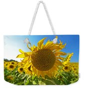 Colby Farms Sunflower Field Newbury Ma Ball Of Fire Weekender Tote Bag
