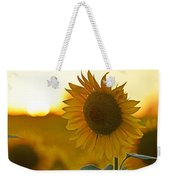 Colby Farms Sunflower Field Newbury Ma Closeup Sunset Weekender Tote Bag