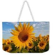 Colby Farms Sunflower Field Newbury Ma Sunrise Weekender Tote Bag