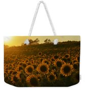 Colby Farms Sunflower Field Newbury Ma Sunset Weekender Tote Bag