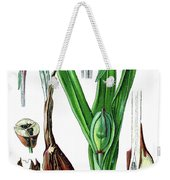 Colchicum Autumnale, Commonly Known As Autumn Crocus, Meadow Saf Weekender Tote Bag
