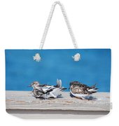 Cold Birds Weekender Tote Bag