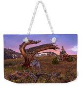 Coloful High Mountain Splendor Weekender Tote Bag