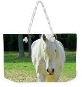 Colonial Horse In Williamsburg Weekender Tote Bag