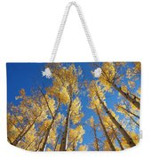 Colorado Aspen Weekender Tote Bag
