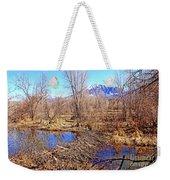 Colorado Beaver Ecosystem Weekender Tote Bag