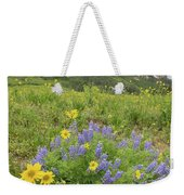 Colorado Color #4 Weekender Tote Bag