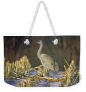 Colorado Sandhill Crane  Weekender Tote Bag