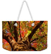 Colorful Autumn Abstract Weekender Tote Bag by James BO  Insogna