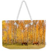 Colorful Autumn High Country Landscape Weekender Tote Bag