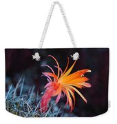 Colorful Cactus Flower Weekender Tote Bag