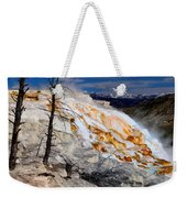Colorful Canary Spring Weekender Tote Bag