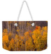 Colorful Colorado Autumn Landscape Vertical Image Weekender Tote Bag