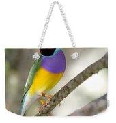 Colorful Gouldian Finch Weekender Tote Bag