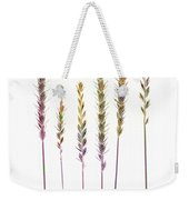 Colorful Grasses  Weekender Tote Bag