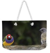 Colorful Guilian Finch And The Plain Bird Weekender Tote Bag