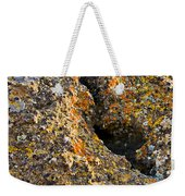 Colorful Lichens Weekender Tote Bag