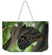 Colorful Markings On A Blue Morpho Butterfly On A Tree Trunk Weekender Tote Bag