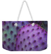 Colorful Rainbow Of Cactus Pads  Weekender Tote Bag